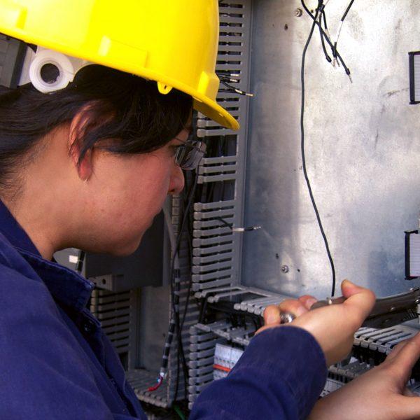 ingeniera multimedia suema medio ambiente energía