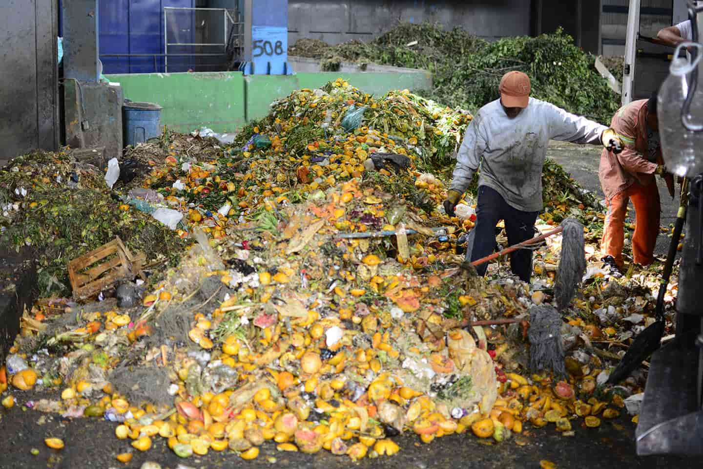 reducir desperdicio Nuestras causas medio ambiente energía